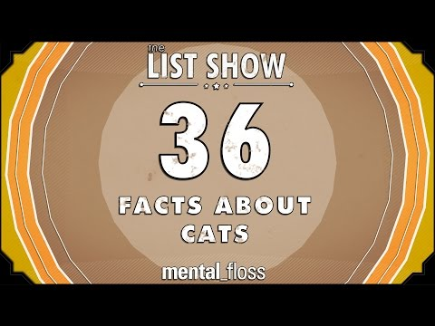 Facts - A weekly show where knowledge junkies get their fix of trivia-tastic information. This week, John tells us about facts about cats! Mental Floss Video on Twitter: http://www.twitter.com/mf_video...