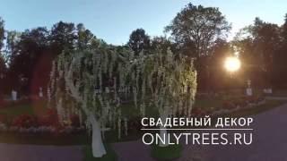 Свадебная арка в форме сердца