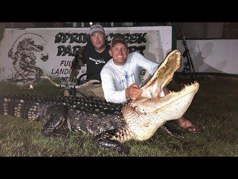 Massive Alligator {HUNT CLEAN COOK} Complete Video! GOURMET!!! - Thời lượng: 17 phút.
