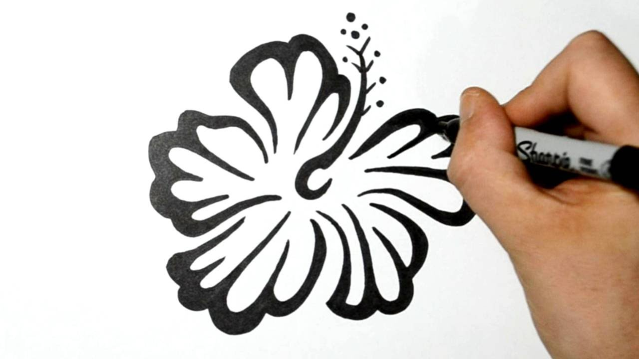How To Draw An Hawaiian Flower Tribal Tattoo Design Style How To Draw A  Rose Tattoo