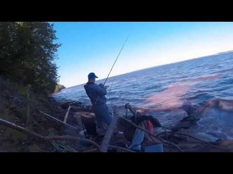 рыбалка на средней волге фидером