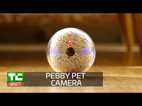 Pebby makes long-distance pet relationships more fun