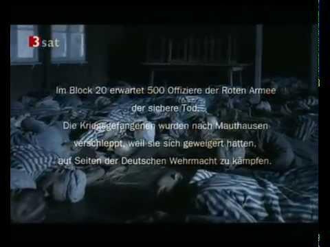 Андреас Грубер 1994 «Hasenjagd: Vor lauter Feigheit gibt es kein Erbarmen»