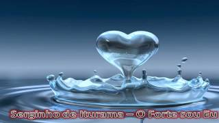 CCB Avulsos - Serginho Iturama - Eu Nunca Pensei
