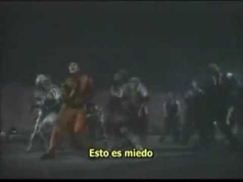 Video no encontrado 2