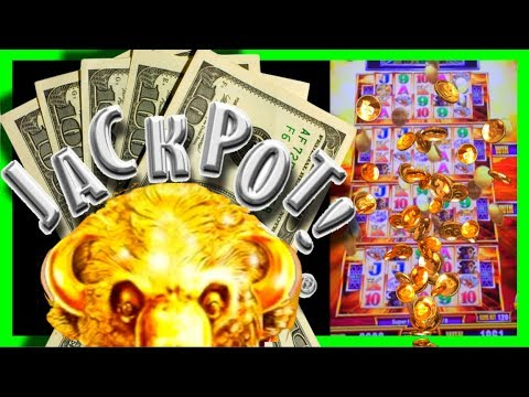 JACKPOT JUNCTION! I LANDED THE BUFFALO GOLD WONDER 4 TOWER SUPER FREE GAMES! BIG WINS W/ SDGuy1234