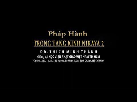 Kinh NIKAYA Giảng Giải - Pháp Hành Trong Tạng Kinh NIKAYA 2