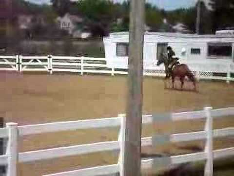 Amy's Hunter Class over Jumps