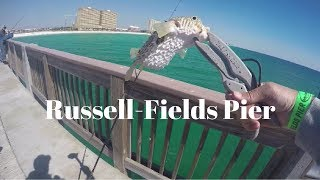 Saltwater Fishing At Russell Fields Pier - Panama City Beach