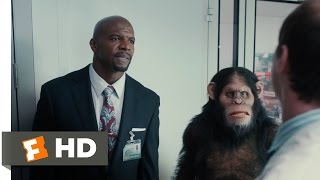 Scary Movie 5 (2013) - Apes and Real Housewives Scene (3/9) | Movieclips