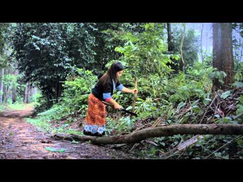 movie hmong tawm tshiab niam nkauj ntsuag HD 01 (видео)