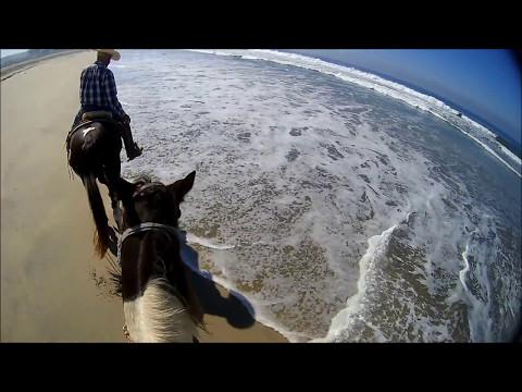 Horseback Riding Chula Vista, San Diego, CA
