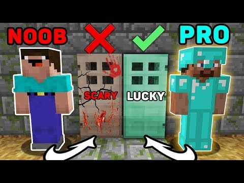 Minecraft NOOB vs PRO : WHICH DOOR TO CHOOSE NOOB AND PRO? ANIMATION 3:00AM