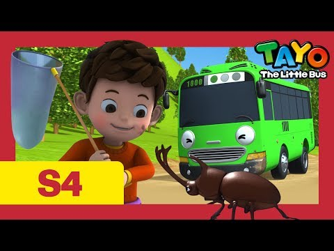 Tayo S4 #25 l Duri's homework l Tayo the Little Bus l Season 4 Episode 25