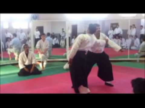 Fundamental Aiki Algerie