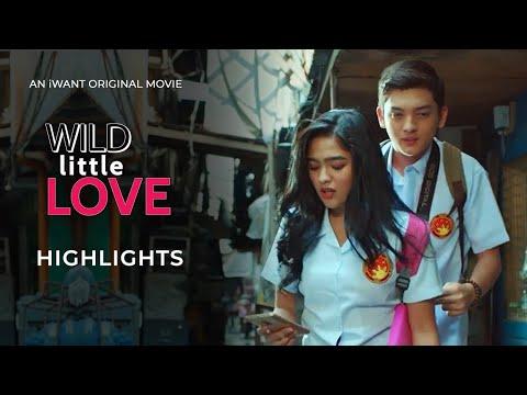 Wild Little Love Movie Preview   iWant Original Movie