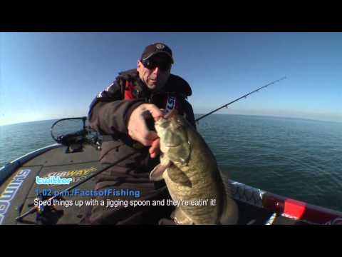 Speed up for Giant Fall Smallmouth Bass – Dave Mercer's Facts of Fishing THE SHOW