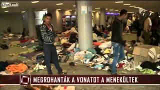 Uchodźca przekazuje do kamery wiadomość dla Polski i całej Europy!