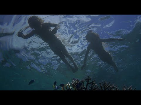 The Blue Lagoon (1980) - 3 - Surviving and Adapting