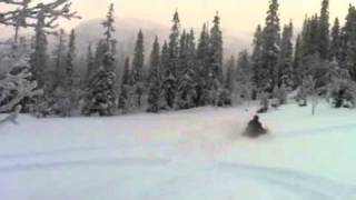 10. Switchback 800 -04 Powder