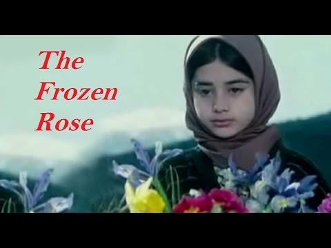 Video The Frozen Rose (short Iranian film) in Urdu download in MP3, 3GP, MP4, WEBM, AVI, FLV January 2017