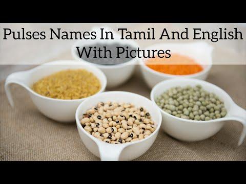 பயறு பருப்பு வகைகளின் பெயர்கள் தமிழ், ஆங்கிலத்தில் | pulses names in tamil and english with pictures