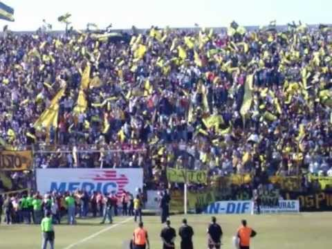 HINCHADA ALMIRANTE BROWN - La Banda Monstruo - Almirante Brown