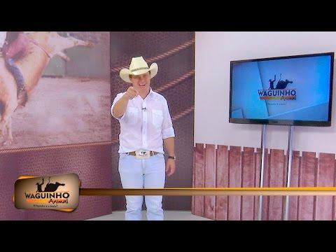 Waguinho Animal 30/01/16 na íntegra | Rodeio em Embaúba