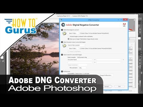 Review of the Adobe Digital Negative Converter for Photoshop, Lightroom, Photoshop Elements