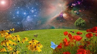 Video SLEEP EASY and Relax, Healing Music for STRESS and ANXIETY Relief | Fall Asleep, Calm Down Fast ★ 69 MP3, 3GP, MP4, WEBM, AVI, FLV Agustus 2019