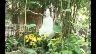 Tâm Thư (Ngày 02-04-2011)