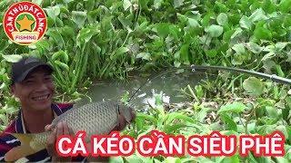 Video Câu cá lỗ bèo l câu được cá chép khủng trong ổ bèo huyền thoại l Best fishing video l CẦN THỦ ĐẤT CẢ MP3, 3GP, MP4, WEBM, AVI, FLV Mei 2019