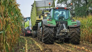 Video Modderen in de mais extreem 2015 | Harvesting maize in the mud extreme | BMWW | Claas Jaguar 940 MP3, 3GP, MP4, WEBM, AVI, FLV Agustus 2017