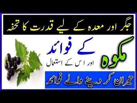 Health Benifits Of Solanum Nigram    Makoh ke fawaid ur us ke istemal By Hakeem Zia Shahid