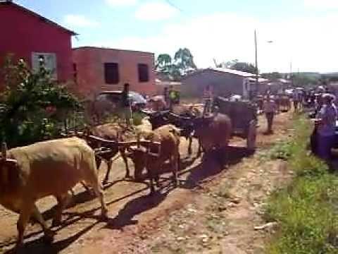 Desfile de Carros de Bois em Macuco de Minas 2011 - 2º parte