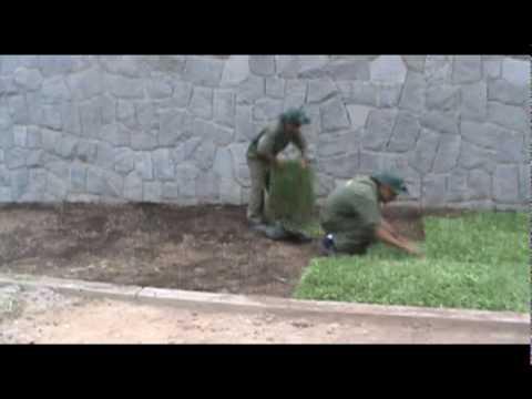 INSTALACION DE GRASS