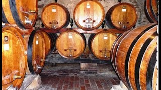 Montepulciano Italy  city pictures gallery : Montepulciano, Italy and its surrounding vineyards