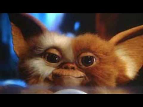 Gizmo Saves the Day
