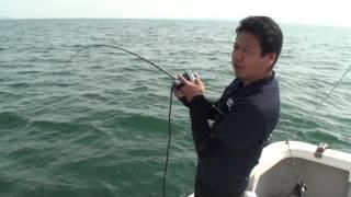 伊勢湾で謎の巨大魚を見事釣り上げるvalgoとロッドEJ6041の威力