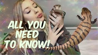 EVERTHING YOU NEED TO KNOW ABOUT BLUE TONGUE SKINKS! ( complete care guide) by Emma Lynne Sampson