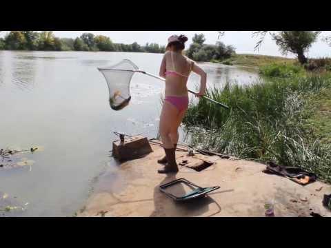 где ловить рыбу в шебекино