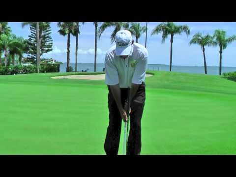 Worst mistake in golf – Keep Your Head Down…. Fred Curtis PGA Professional