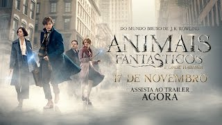 Video Animais Fantásticos e Onde Habitam - Trailer Final (leg) [HD] MP3, 3GP, MP4, WEBM, AVI, FLV Juni 2018