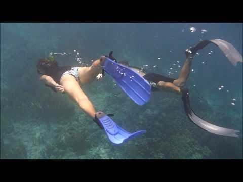 Introduction to Freediving (Pure Diver)