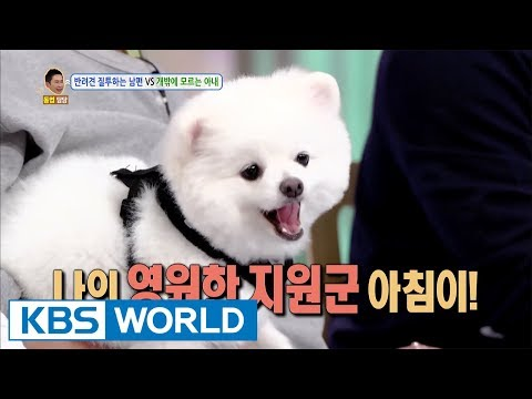 My wife only cares about the dog [Hello Counselor / 2017.09.18] (видео)