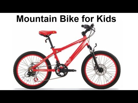 20 inch MTB — Ferrari CX 30 Review Mountain Bicycle