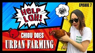 Video HELP LAH! Ep 7: Chiou Does URBAN FARMING! (Season Finale) MP3, 3GP, MP4, WEBM, AVI, FLV November 2018