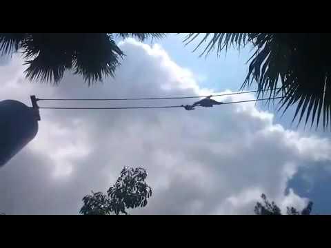 Chemita en la Ruta Orangután