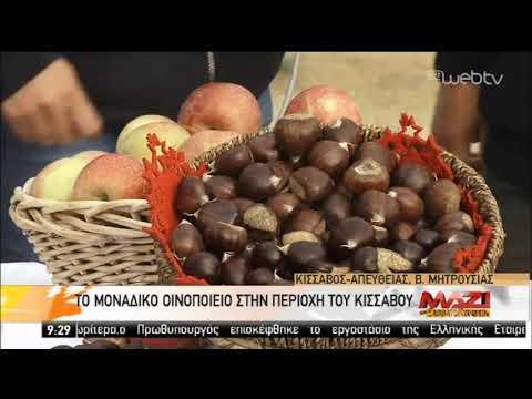 Το μοναδικό οινοποιείο στην περιοχή του Κισσάβου | 16/11/2019 | ΕΡΤ