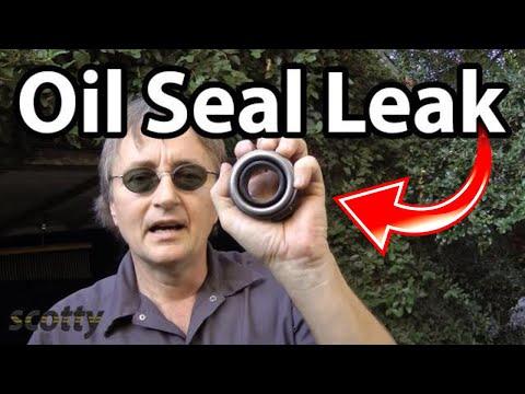 Fixing Oil Seal Leaks Fast.